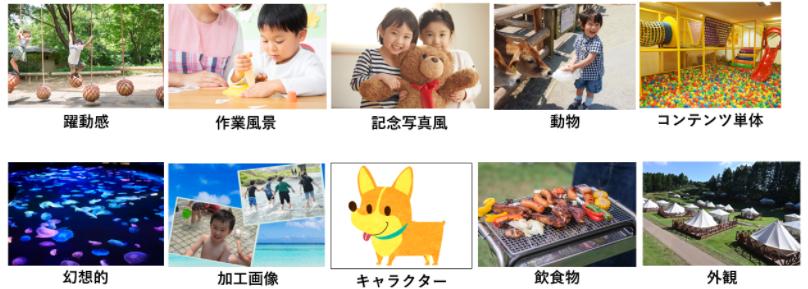画像の分類パターン